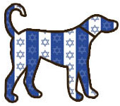 Hanukkah Dog Collars