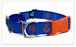 Martingale Buckle Dog Collars